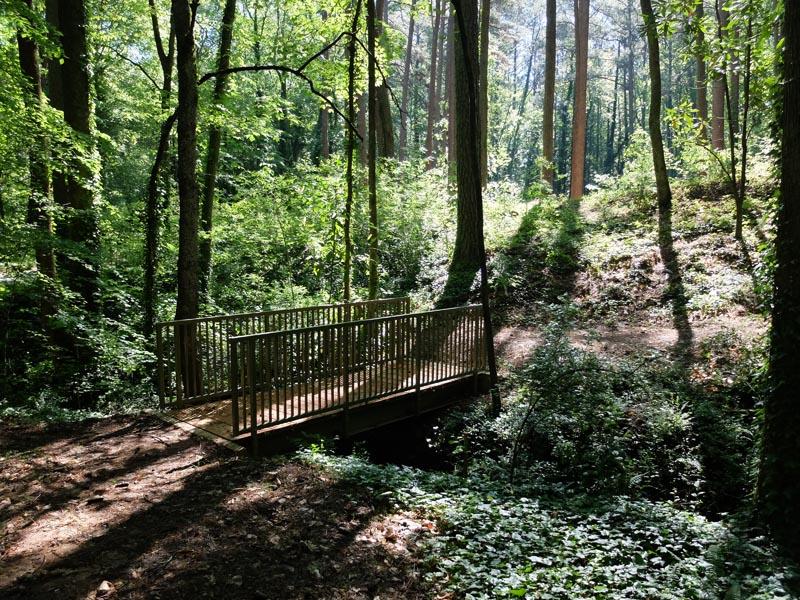 Sykes Park Trail - 2